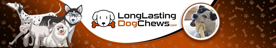 long lasting dog chews