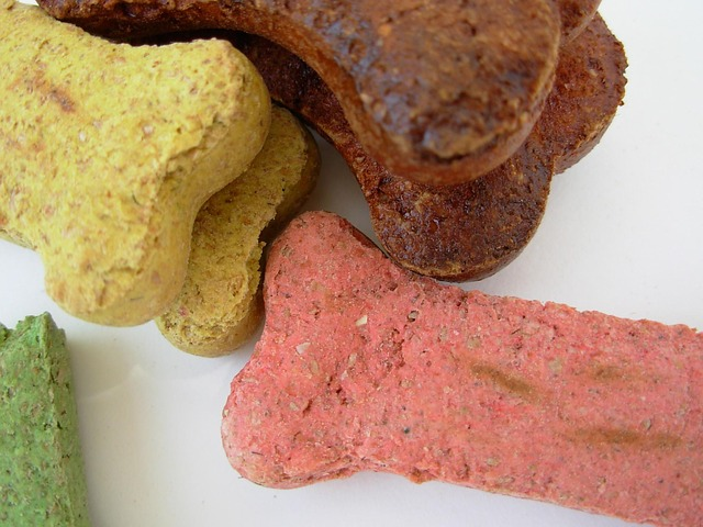 long lasting dog chew treats
